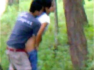 jav  GF  ,  india  ,  mature   porn movies
